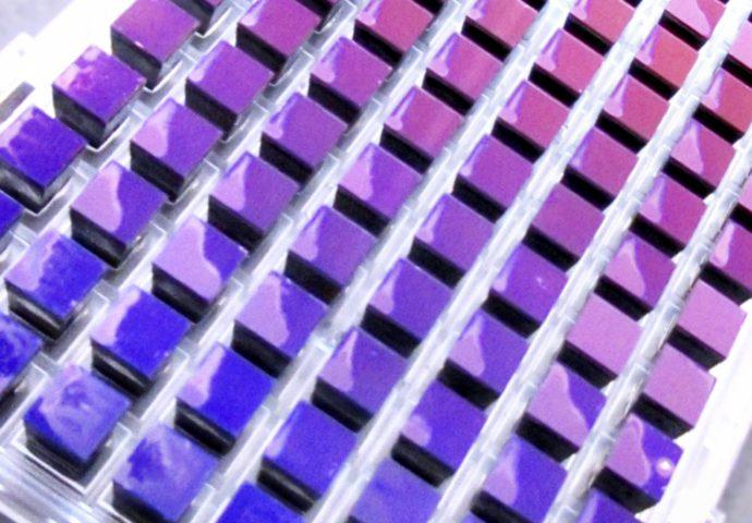 Genotyping array design